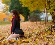 Autumn_Leaves-93-lg