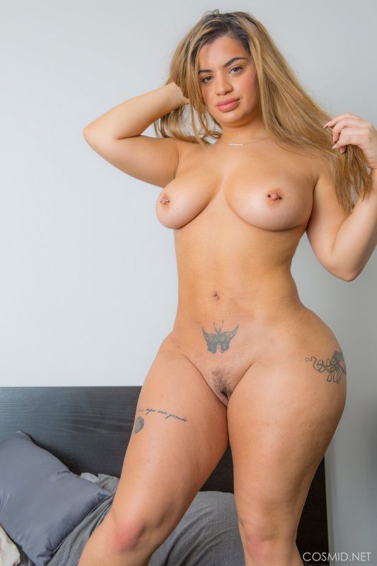 Black shemale tranny escorts in los angeles