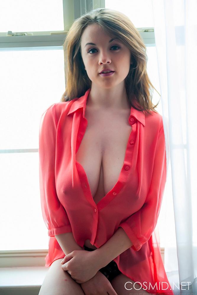Sheer Blouse Tits